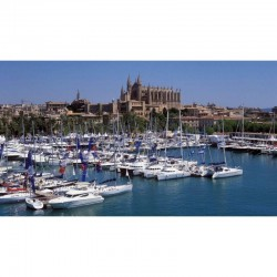 Shopping in Palma (Round...